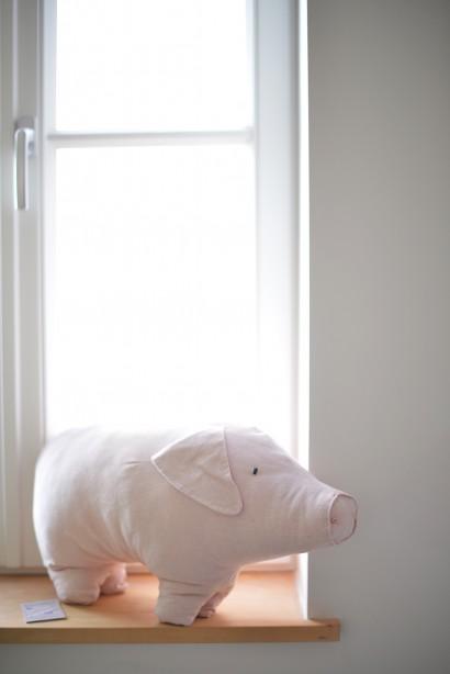Schwein.jpg
